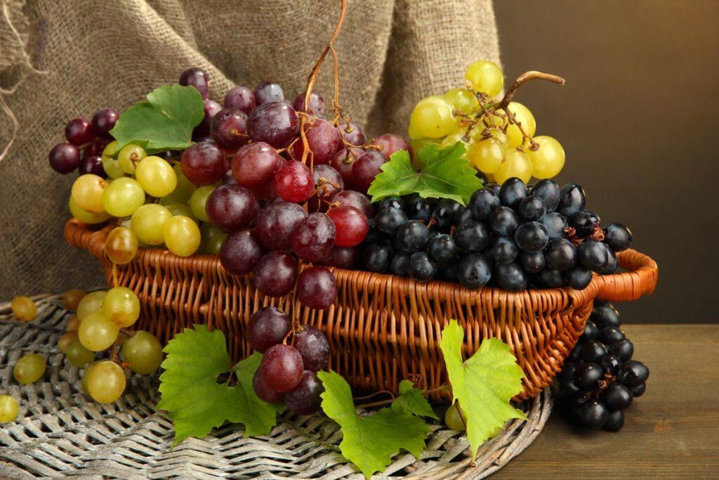 ワインにまつわる豆知識をあらためてご紹介します!!
